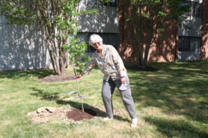 Lakewood Senior Living plant trees to recognize Arbor Day 3
