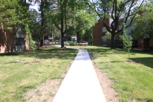 Path at Lakewood Senior Living where residents planted trees to recognize Arbor Day 7