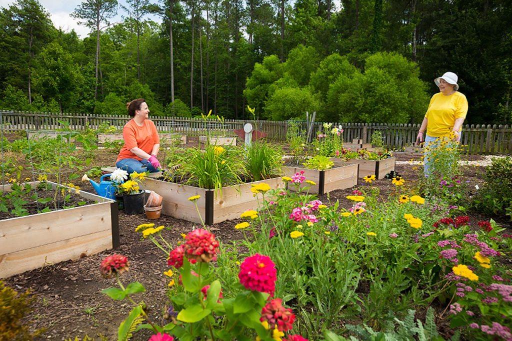 More Gardening at Lakewood Senior Living