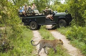 safari-at-wasgamuwa-national-park