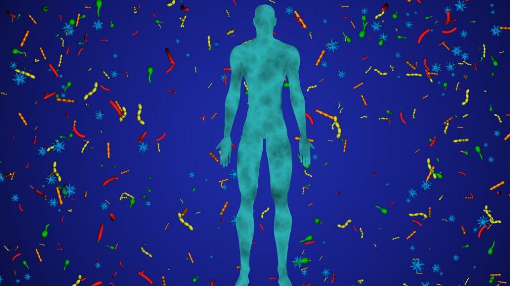 Bacteria and virus around human body