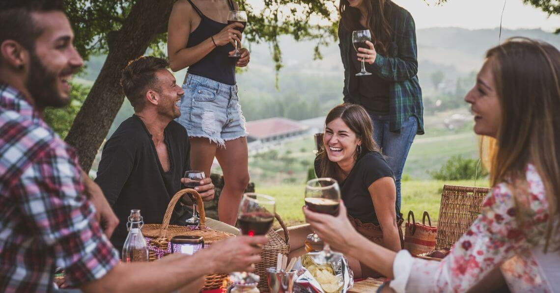 Young friends enjoying wine in a picnic