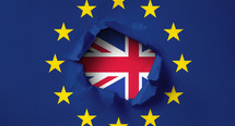 Thumb brexitflagge