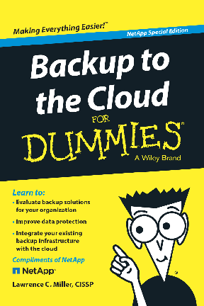 Thumb original dummies backup to the cloud netapp final