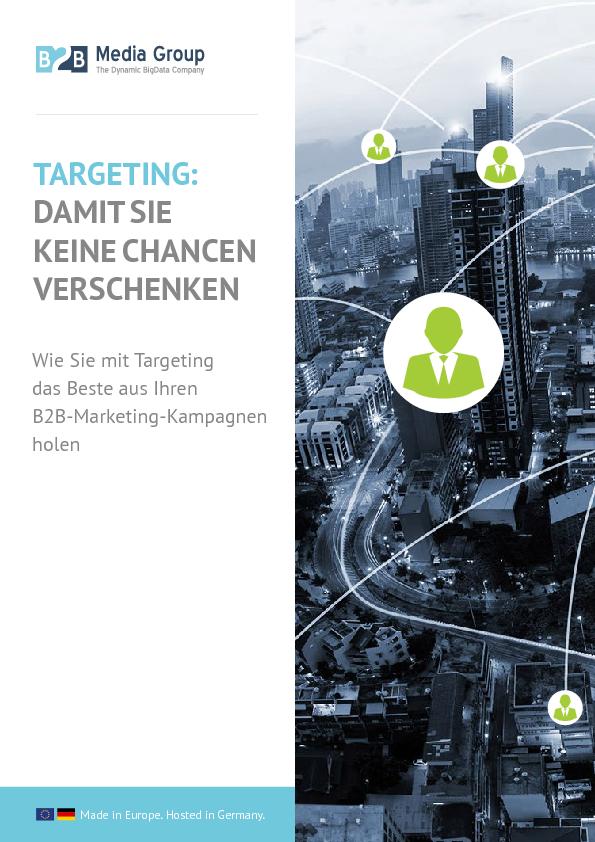 Thumb original b2bmg targeting sales