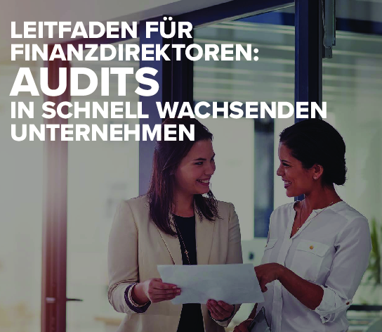 Square cropped thumb original 1wp finance directors guide auditing german 5c4f42928a719a8b