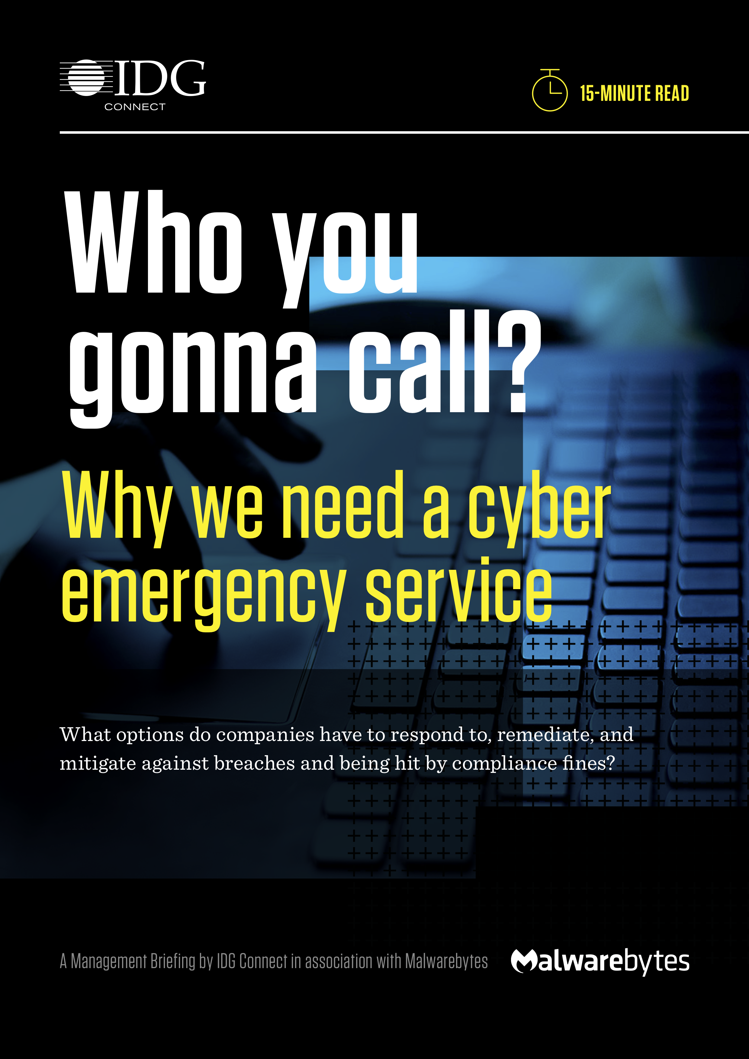 Who you gonna call   why we need a cyber emergency service  verschoben