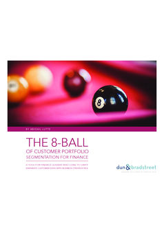 The 8-Ball of Customer Portfolio Segmentation for Finance
