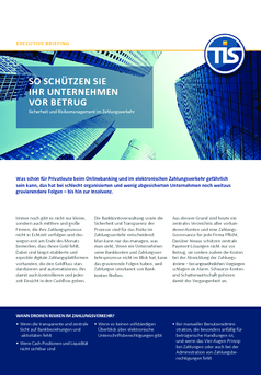 Thumb tis executive briefing 2017 sicherheit und risikomanagement.pdf