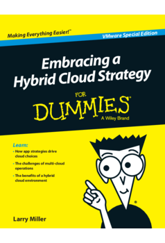Thumb dcma 0482   embracing a hybrid cloud strategy for dummies