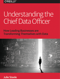 Understanding the Chief Data Officer
