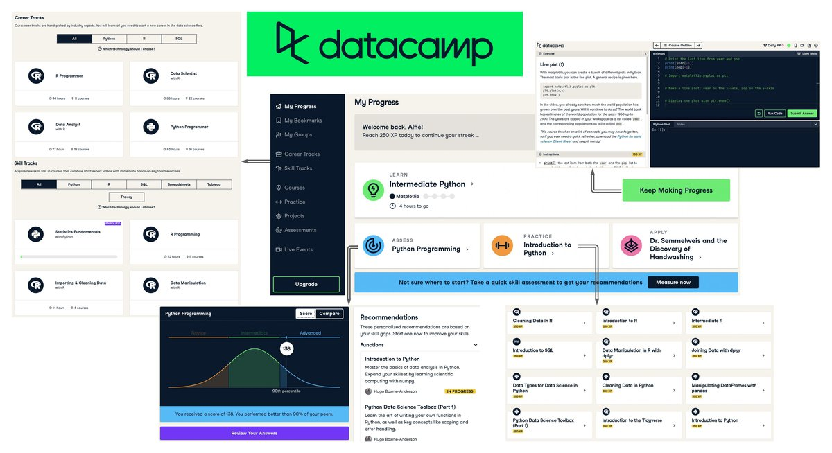 datacamp_interface (1).jpeg