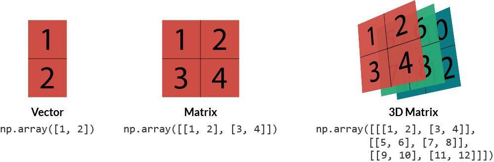 numpy-vector-matrix-3d-matrix.jpg