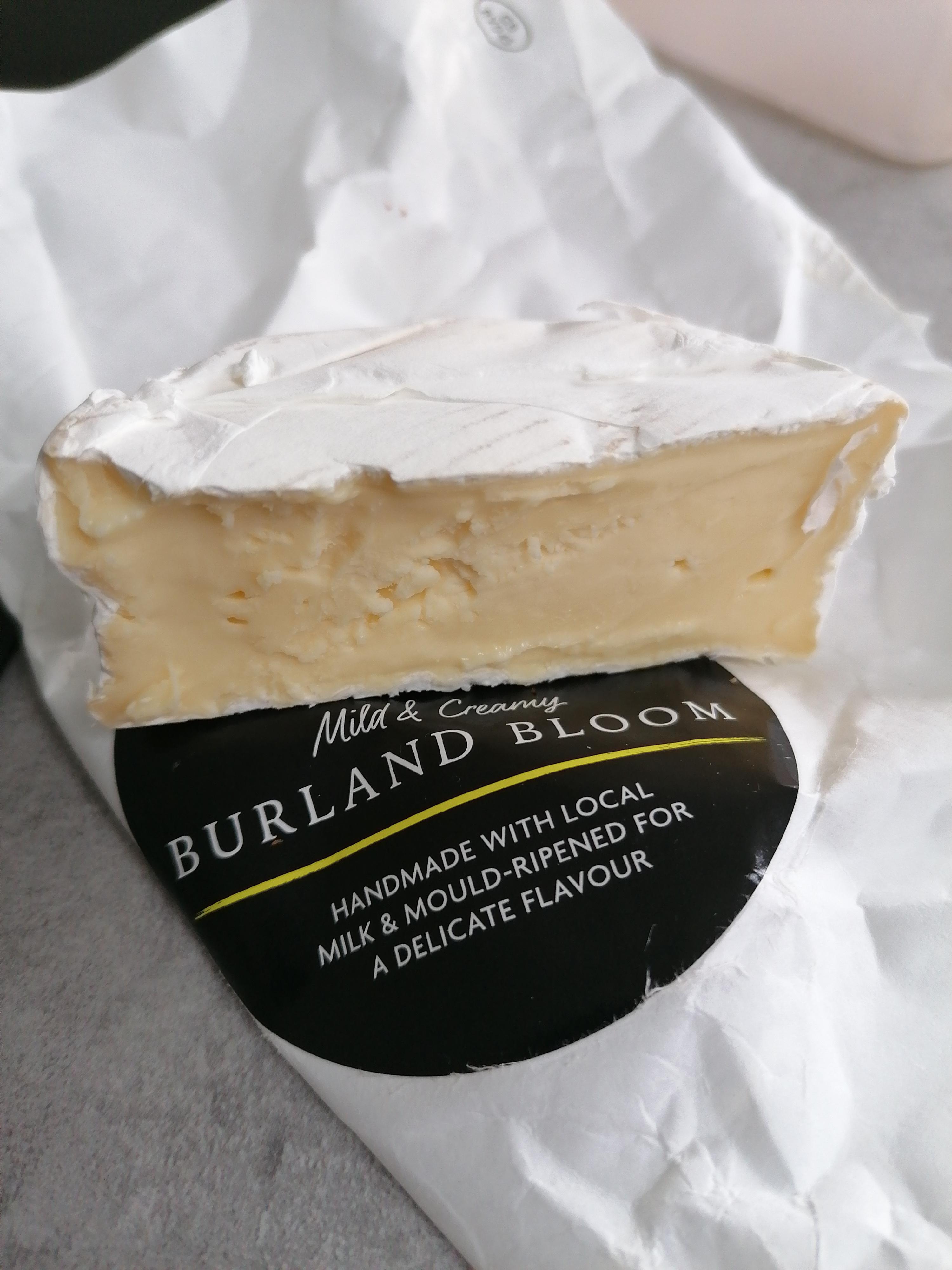 Burland Bloom