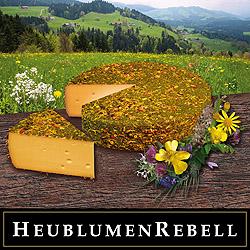 Hay Flower Rebel