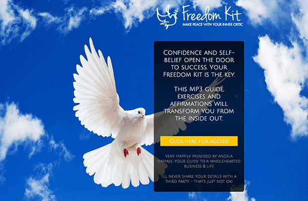 Freedom Kit resized