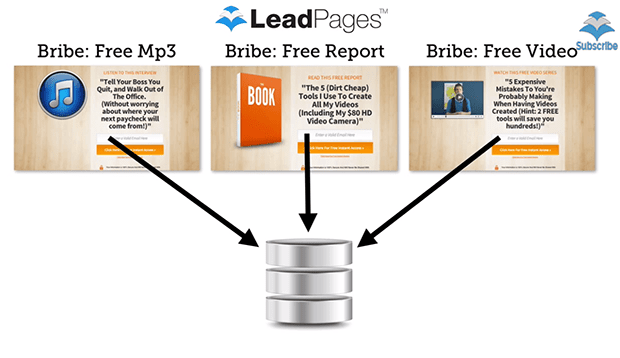"With this new digital asset delivery system, you can now easily deliver any free content or ""lead magnets"" directly from LeadPages."
