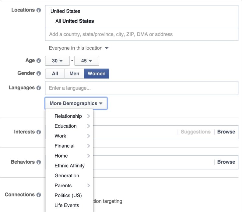 A shot of the Facebook audience targeting system.