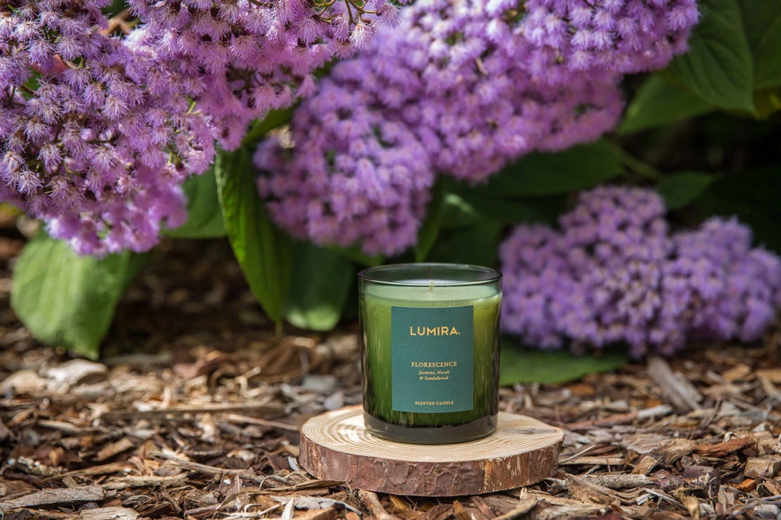 Charitable Giving Lumira Royal Botanic Gardens Sydney
