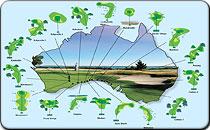 Worlds Longest Golf Course