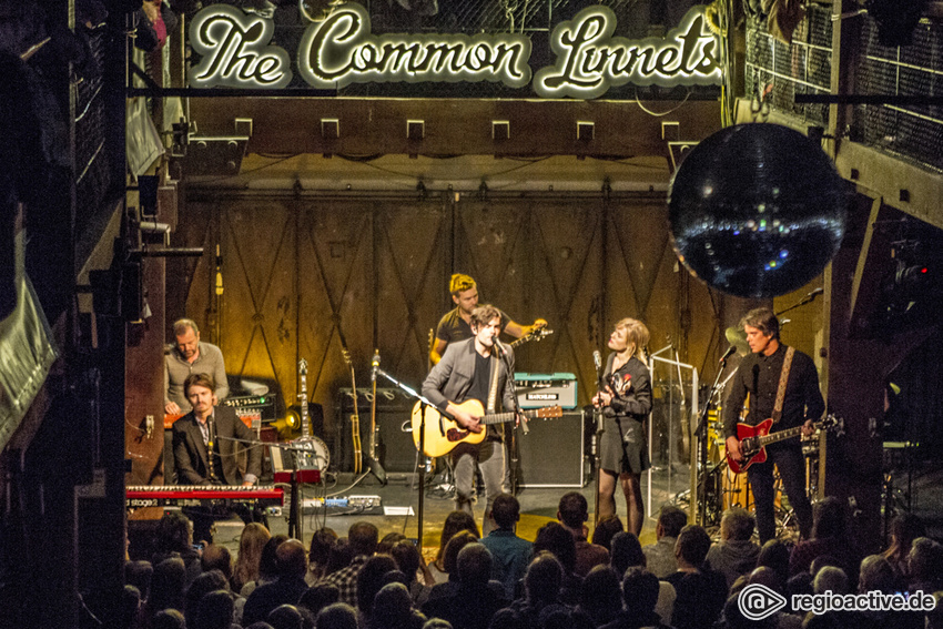 The Common Linnets (live in Hamburg, 2016)
