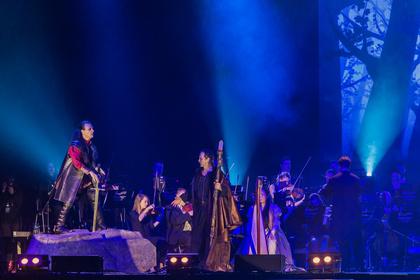 Licht und Schatten - Fotos von Excalibur - The Celtic Rock Opera live in der Festhalle Frankfurt