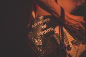 Zu spät: Fotos von Peter Doherty live in der Batschkapp in Frankfurt