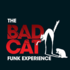 The Bad Cat Funk Experience (Band) sucht Keyboarder/in
