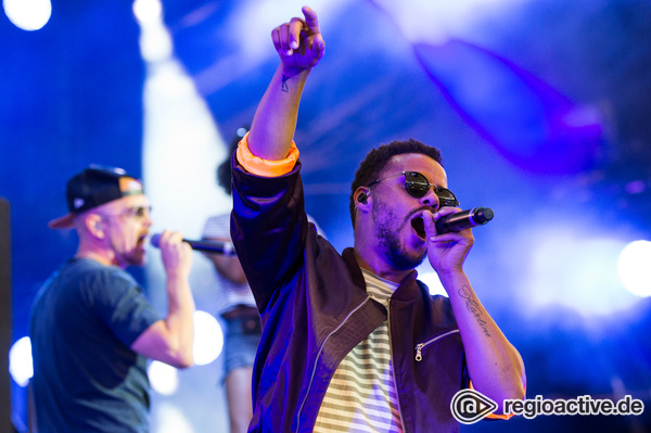 Digge Show - Hamburger Flow: Bilder der Beginner live beim Wireless Festival 2017