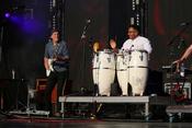 Weißer Blues: Live-Fotos von Steve Winwood bei den Jazzopen Stuttgart