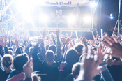 Chefboss: Bilder der Dancehall Group live beim Deichbrand Festival 2017