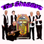 The Shaggys (Cover-/Tributeband) sucht Gitarrist/in, Keyboarder/in, Pianist/in