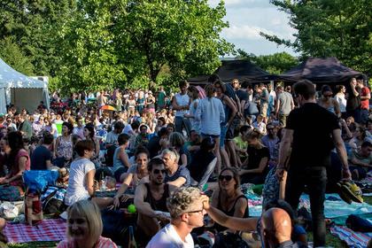 Sommer-Idylle - Impressionen vom Samstag beim Heimspiel Knyphausen 2017
