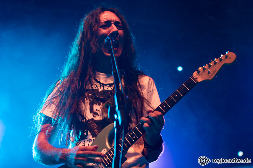 Alcest (live in Frankfurt, 2017)