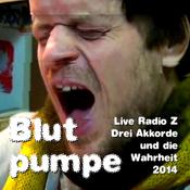 Live Radio Z - Drei Akkorde und die Wahrheit 2014