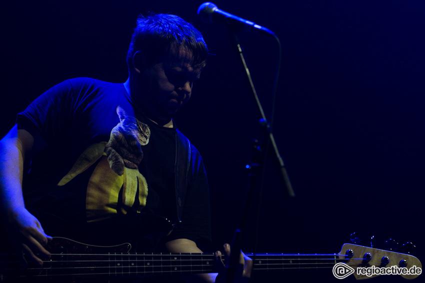 Pears (live in Frankfurt am Main 2017)