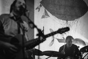 Intensiv: Fotos von Gisbert zu Knyphausen live in der halle02 in Heidelberg