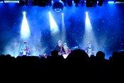 Konsistent: Live-Bilder von Tocotronic in der halle02 in Heidelberg