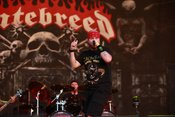 Hatebreed: Fotos der Hardcore-Metaller live beim Wacken Open Air 2018