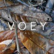 WALD EP