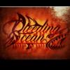 Metalcore/Progressive Bleeding Ocean sucht Schlagzeuger