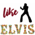 Blues / Rock - Gitarrist für Elvis- Coverband (70er) gesucht