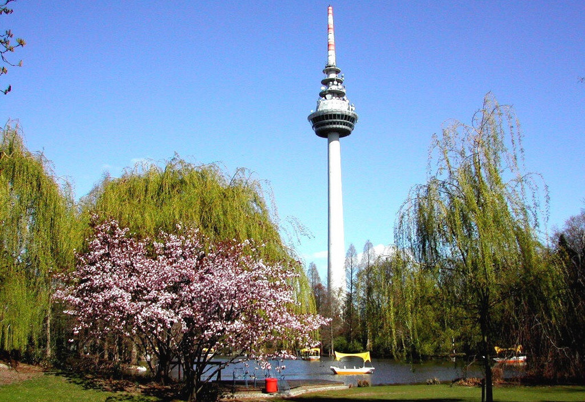 Der Luisenpark in Mannheim mit dem Fernmeldeturm im Hintergrund.