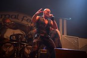 Volle Power: Live-Bilder von Primal Fear beim Knock Out Festival 2018 in Karlsruhe