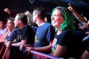 WIZO: Fotos der Punkband live in der halle02 in Heidelberg