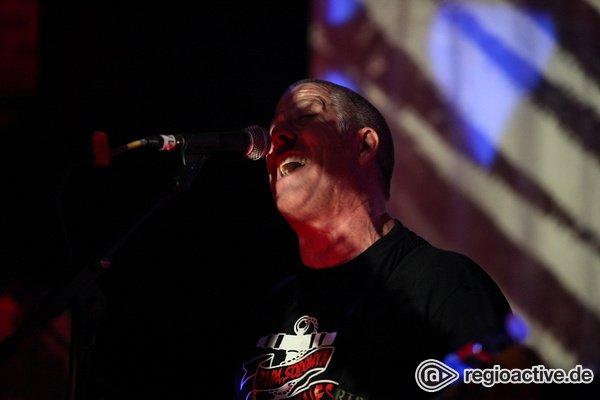 Hart aber herzlich - Pressure Drop Punk Rock: Bilder von Loaded beim 8. Mannheimer Winteraward