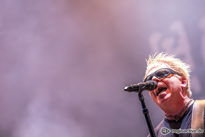 The Offspring (live auf dem Highfield Festival, 2019)