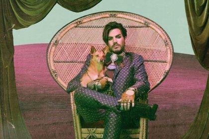 Umtriebig - Ohne Queen unterwegs: Adam Lambert 2020 auf Tour in Deutschland