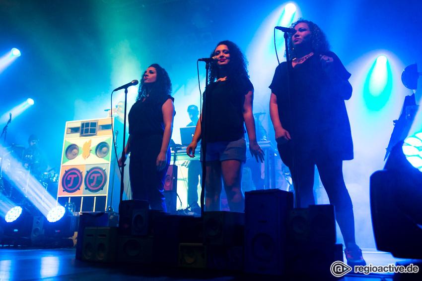 Samy Deluxe (live in Frankfurt, 2016)