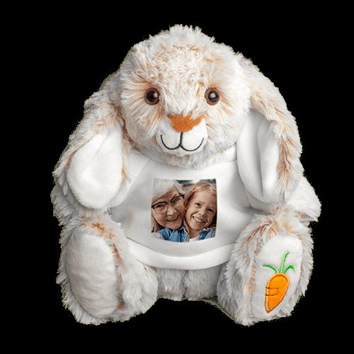 Stuffed Bunny Teady